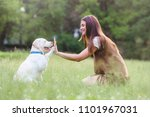 young woman playing with cute... | Shutterstock . vector #1101967031