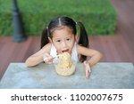 cute little asian child girl... | Shutterstock . vector #1102007675