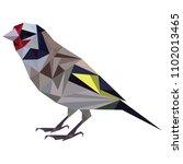 sparrow   beautiful bird | Shutterstock .eps vector #1102013465