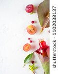 organic bio cosmetics with... | Shutterstock . vector #1102038137
