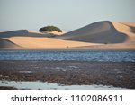 The Biggest Sand Dunes From...