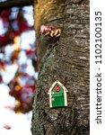 Small photo of Irish fairy door on the tree