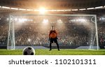 goalkeeper is waiting to catch... | Shutterstock . vector #1102101311