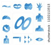 set of 13 icons such as dishes...