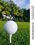 golf ball on tee at florida course - stock photo