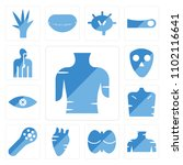 set of 13 icons such as female...