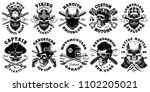 set of vintage different skulls ... | Shutterstock .eps vector #1102205021