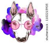 hippie bull terrier in the pink ... | Shutterstock . vector #1102215935