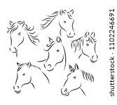 Stock vector horse head vector line art style 1102246691