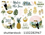 summer set  hand drawn elements ... | Shutterstock .eps vector #1102282967
