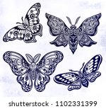 a collection of butterflies or... | Shutterstock .eps vector #1102331399