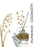 ears of oats oat flakes filled... | Shutterstock . vector #1102362374