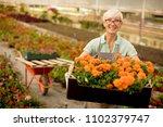 portrait of senior woman... | Shutterstock . vector #1102379747