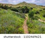 Mountain Biking Trail On Table...