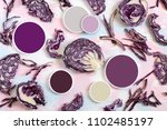 red cabbage  pieces  slices ... | Shutterstock . vector #1102485197