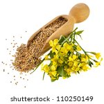 Mustard Seeds In The Wooden...