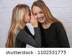 portrait of two girls sisters... | Shutterstock . vector #1102531775