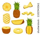 flat vector set of whole ...   Shutterstock .eps vector #1102543361