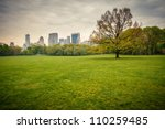 central park at rainy day  new... | Shutterstock . vector #110259485