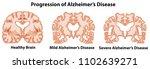 an anatomy of human brain...   Shutterstock .eps vector #1102639271