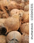 Small photo of coconuts with its outer husk removed leaving only the inner shell