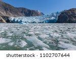 sawyer glacier cruise   Shutterstock . vector #1102707644