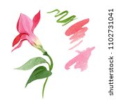 red dipladeniya. floral...   Shutterstock . vector #1102731041