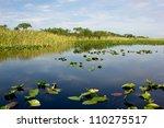 Scenic Landscape Florida...