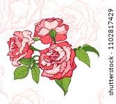 vintage rose. hand drawn vector ... | Shutterstock .eps vector #1102817429