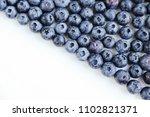 ripe  wild fleshly picked... | Shutterstock . vector #1102821371