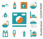 set of 13 icons such as washing ...