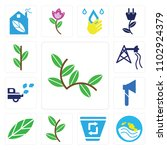 set of 13 icons such as plant...