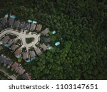 Top view aerial drone image of residential suburban houses backing onto a lush healthy green forest ravine on a summer day.