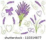 illustration of lavender...