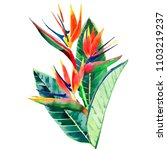 bright beautiful green floral...   Shutterstock . vector #1103219237