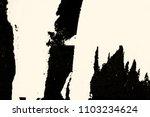 old grunge ripped torn vintage... | Shutterstock . vector #1103234624