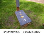 washer toss game fun bag yard... | Shutterstock . vector #1103262809