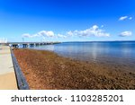 panoramic view of the woody... | Shutterstock . vector #1103285201