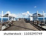 detail view of the woody point... | Shutterstock . vector #1103295749