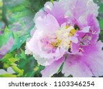 the beautiful abstract complex...   Shutterstock . vector #1103346254