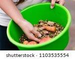 Bowl Of Organic Horse Fodder ...