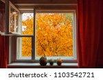looking through window on the... | Shutterstock . vector #1103542721