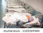 newborn baby in first of many... | Shutterstock . vector #1103569484