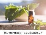 stinging nettle essential oil ... | Shutterstock . vector #1103600627