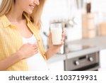 beautiful pregnant woman... | Shutterstock . vector #1103719931