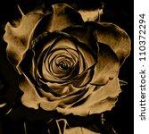 Art Floral Vintage Monochrome...