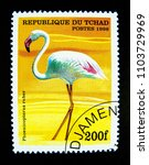 Small photo of BANGKOK, THAILAND. – On June 2, 2018 - A stamp printed in Republic of Chad shows an image of Phoenicopterus ruber bird.