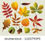 a collection of colorful autumn ... | Shutterstock .eps vector #110379395