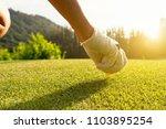 hand putting golf ball on tee... | Shutterstock . vector #1103895254