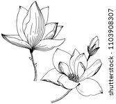 magnolia in a vector style... | Shutterstock .eps vector #1103908307